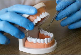 La importancia del protésico dental - Canodent